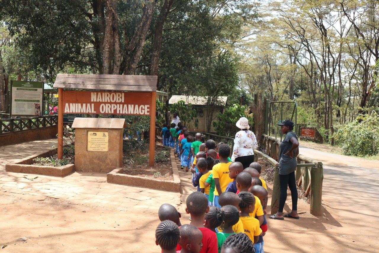 Kindergarten School Trip